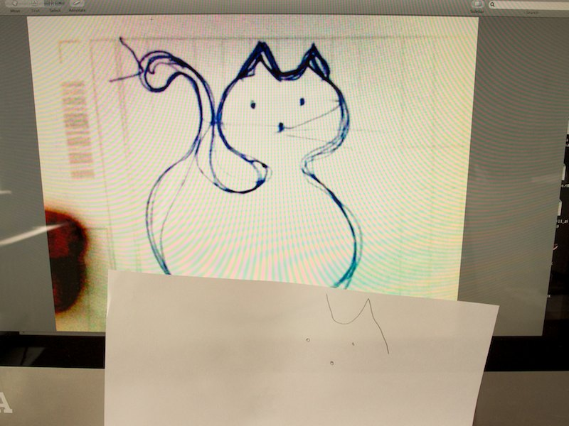 Zvýraznená silueta mačky